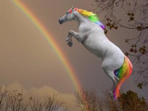 rainbow_horse